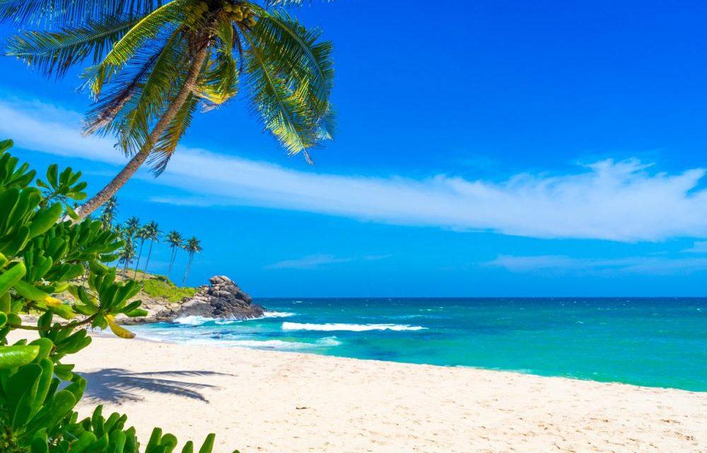 Must visit: 't paradijselijke Sri Lanka | 9 dagen €687,- p.p.