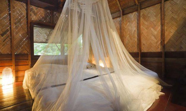 Bed bugs & andere griezels die je op vakantie kunt tegenkomen