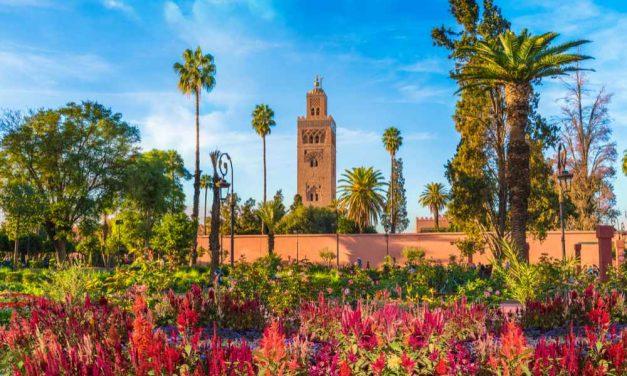 YES! Unieke rondreis Koningssteden in Marokko | 8-daagse rondreis