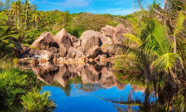 Must visit: de Seychellen | incl. Emirates vluchten + ontbijt €999,-