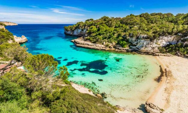 Next trip: 8 dagen Mallorca   Vluchten en fijn verblijf nu €292,-
