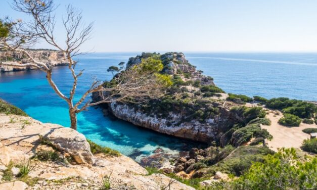 Mallorca in de meivakantie 2020 | Incl. vlucht + verblijf €366,- p.p.