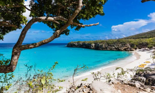 Super last minute verrassingsreis Curacao | 10 dagen €549,- P.P.