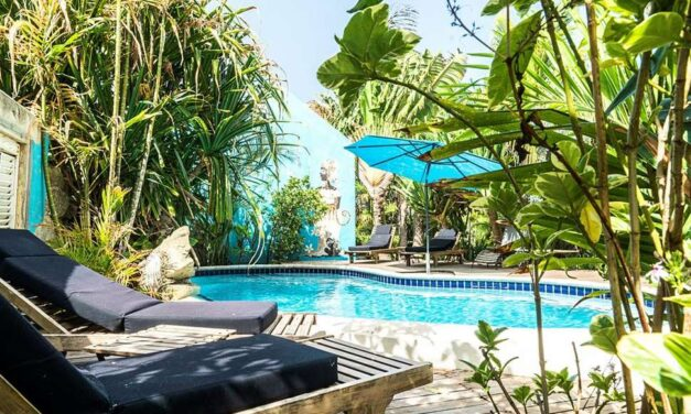 Wegdromen @ tropisch Curacao | 9 dagen incl. ontbijt €739,- p.p.