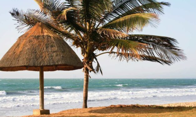 8-daagse vakantie Gambia incl. ontbijt €300,- | Super last minute