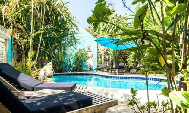 Last minute vakantie @ dushi Curacao   9 dagen mét onbijt €679,-