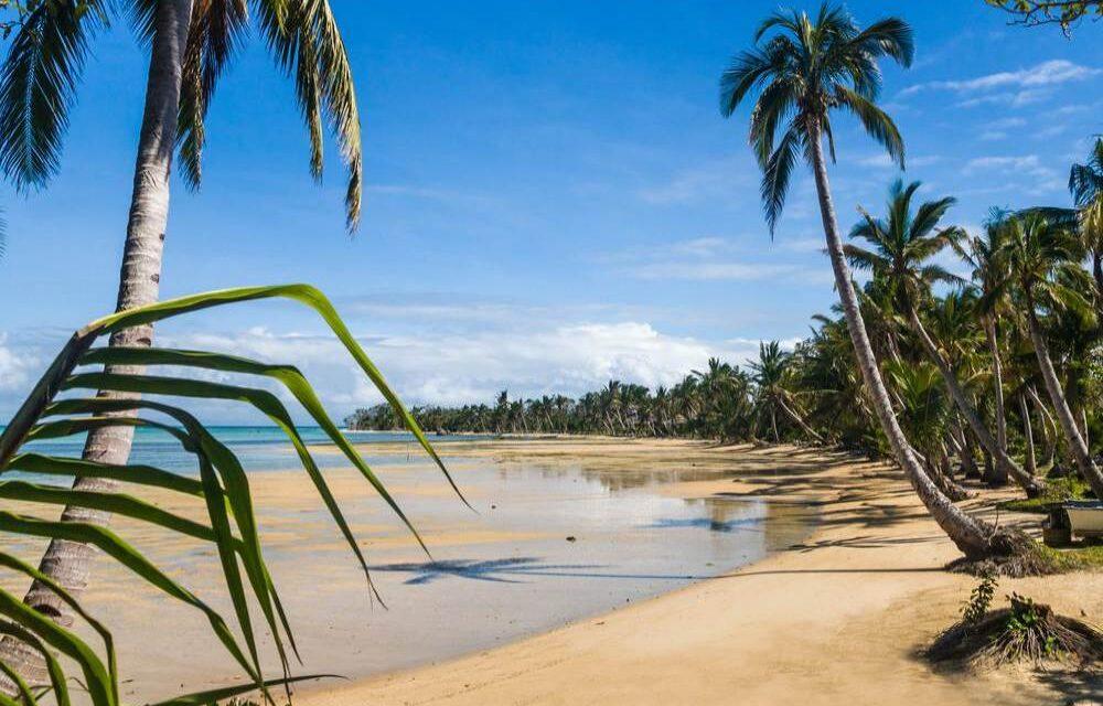 8 dagen zon @ Gambia   Incl. verblijf direct aan het strand €389,-