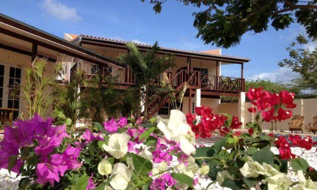 YES! 9-daagse zonvakantie naar Aruba | Slechts €649,- per persoon
