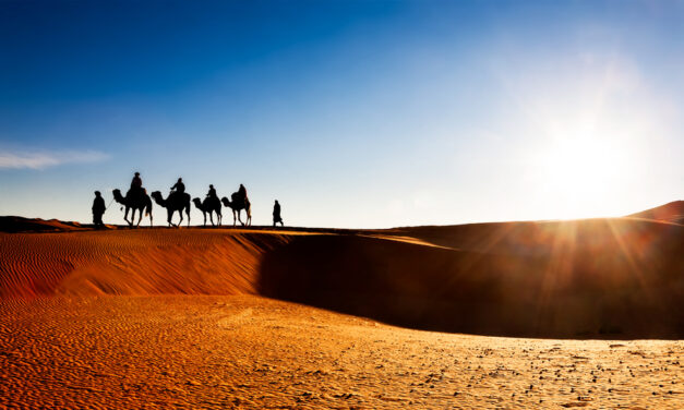 WOW! 8-Daagse trip naar Marokko | Incl. vlucht & verblijf slechts €189,-