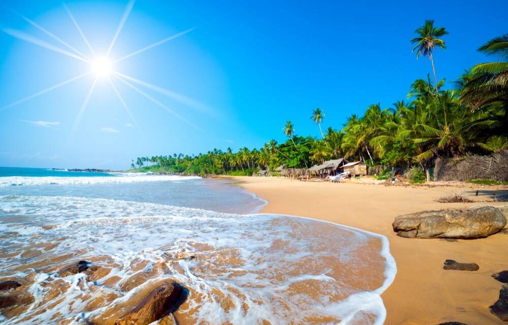 Paradise: Sri Lanka | Last minute 10 dagen mét halfpension €771,-