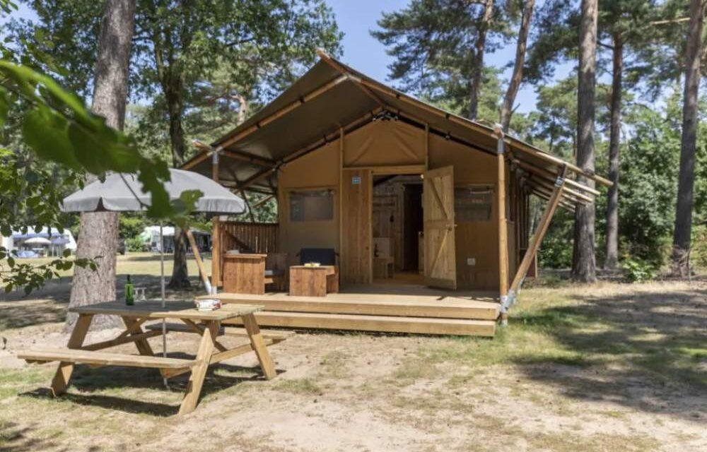 Luxe safaritent in zomervakantie 2020   Midweekje vanaf slechts €373,-