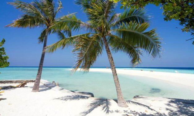 Welcome to paradise! | 9 dagen in september 2020 naar de Malediven!