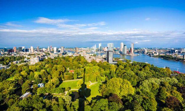 De leukste hotspots van Rotterdam | 8 plekken die je niet mag missen!