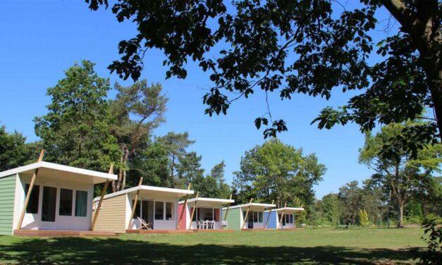 Kleurrijke cabin op de Veluwe | 8-daagse zomervakantie voor €394,-