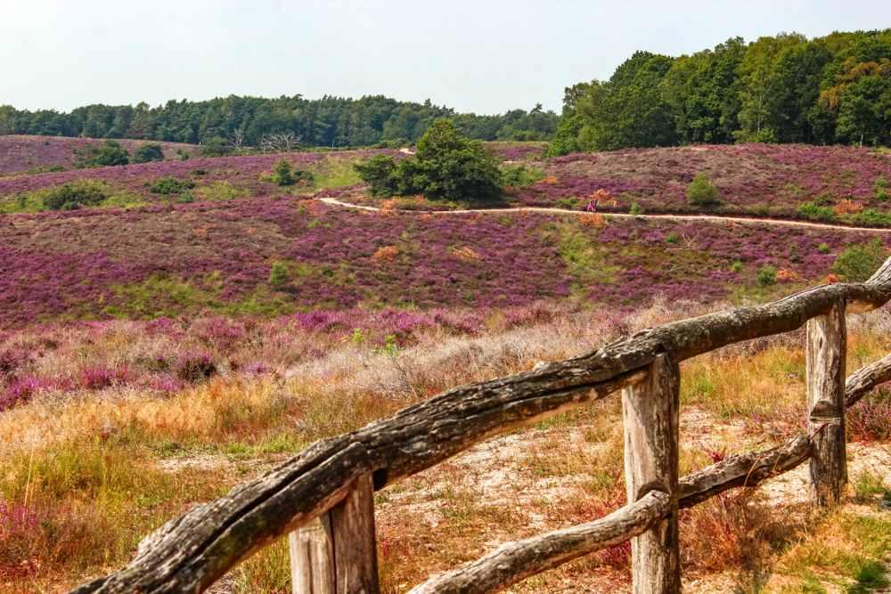 Nationale Parken Nederland
