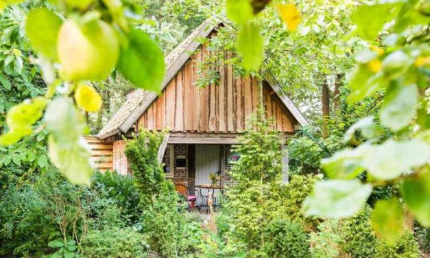 Vakantiehuis 4 personen   Zomervakantie 2020 nu v/a €72,-