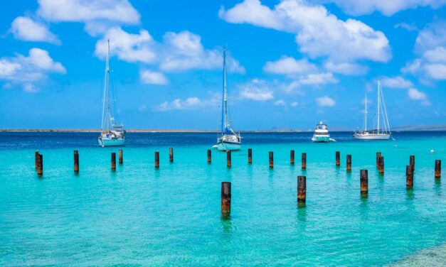 Bounty Bonaire in november 2020 | Incl. TOP verblijf (8,1/10) €599,-