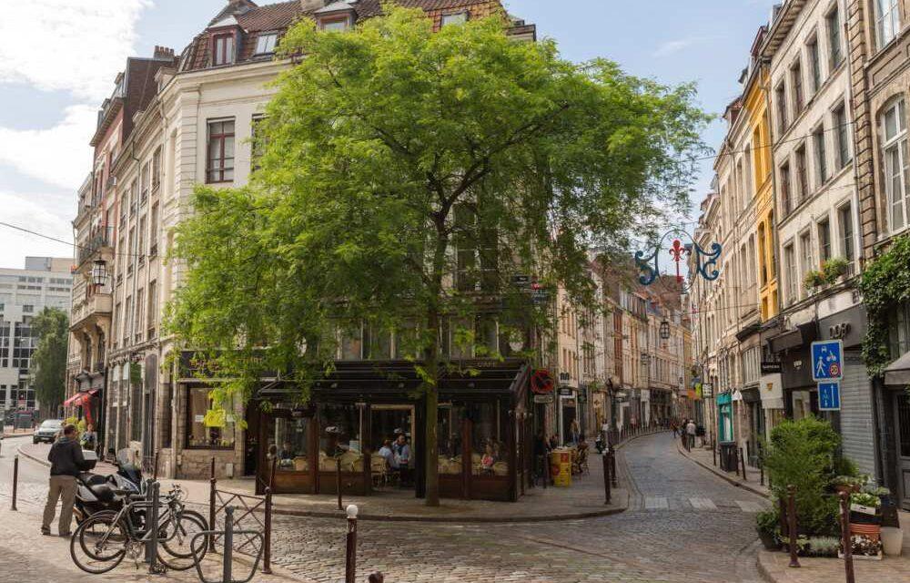 Lille Frankrijk | Wat te doen? | Dit zijn DE tips voor jouw stedentrip!