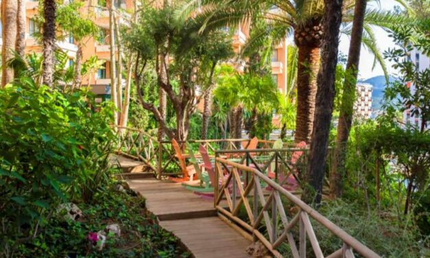 Last minute zomervakantie Mallorca met 50% korting | Nu € 344,- p.p.