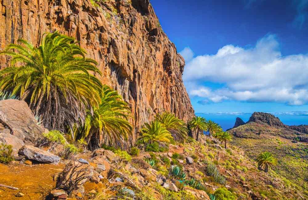 Excursie Gran Canaria het ontdekken van landschappen