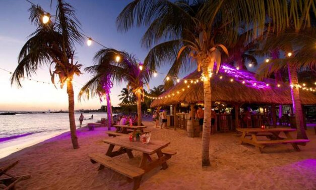 4* LionsDive Beach @ Curacao   9 dagen in november of december €799,-