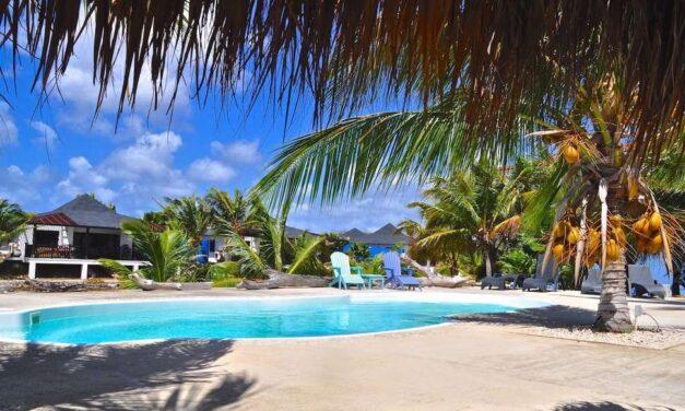 WOW! Last minute bounty Bonaire | 9-daagse 4* vakantie slechts €599,-