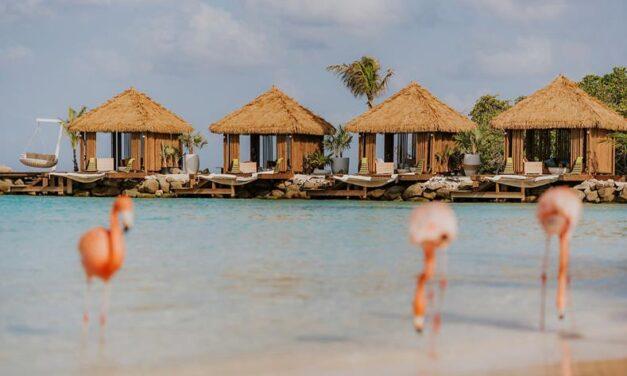 Super last minute 5* Aruba €799,- | Luxe @ beroemd flamingo resort