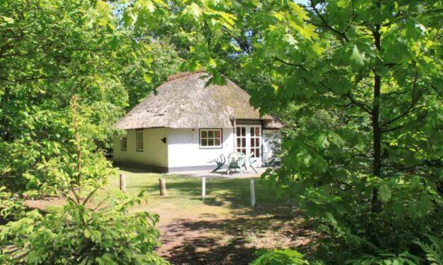 Kerstvakantie 2020 @ Brabant | 4-persoons bungalow vanaf €226,-