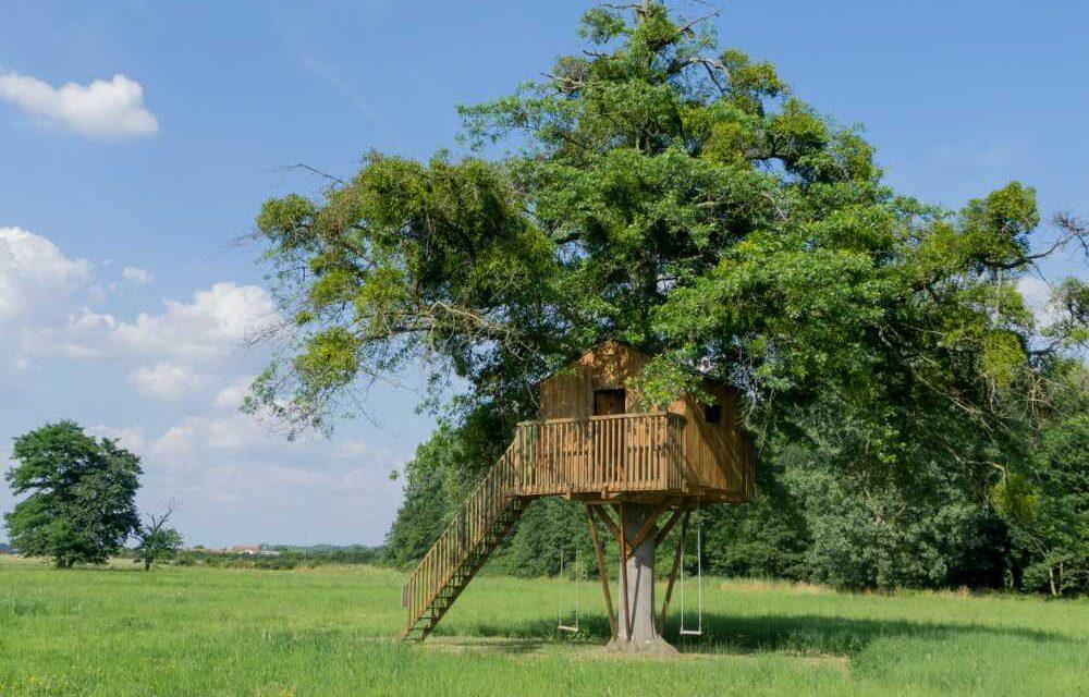 Slapen in een boomhut | Top 5 leukste boomhutten in Nederland