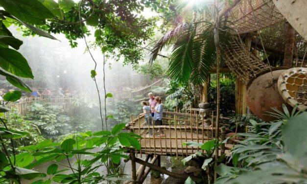 Midweek Center Parcs Het Heijderbos €269,- | Nu 35% vroegboekkorting