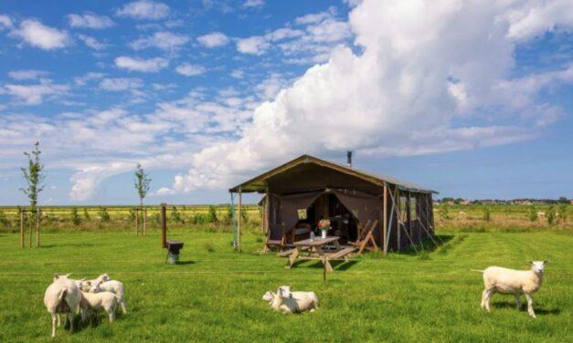 Nieuw! Uniek BoerenBed verblijf @ Roompot Ameland | Nu slechts €328,-