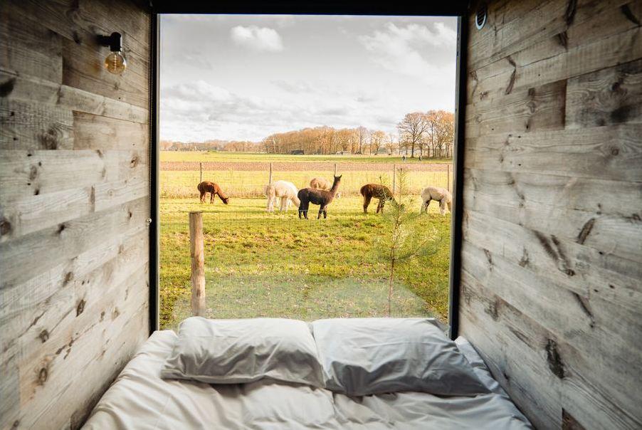 TIP! Tiny House met uitzicht op alpaca's   Nu voor slechts €196,- p.n.