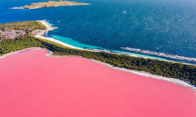 8x Roze Meren | Hoe ontstaat een roze meer & waar vind je ze?