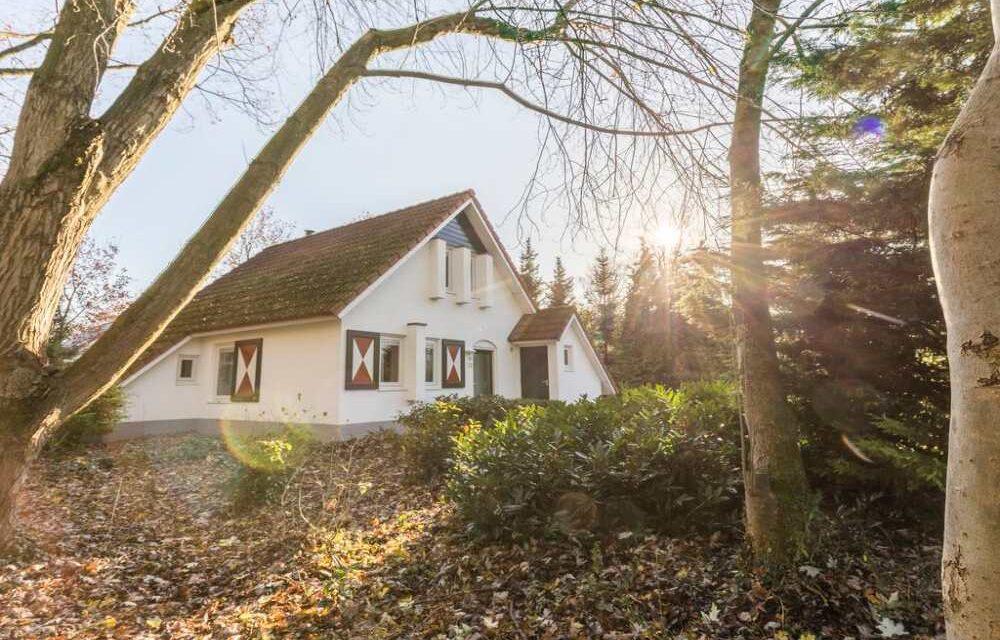 4 dagen naar de Limburgse bossen | Last minute verblijf (4p) met sauna!