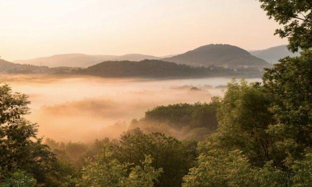 Luxe Landal Wirfttal @ Duitsland deal | Midweek 25% korting in juni