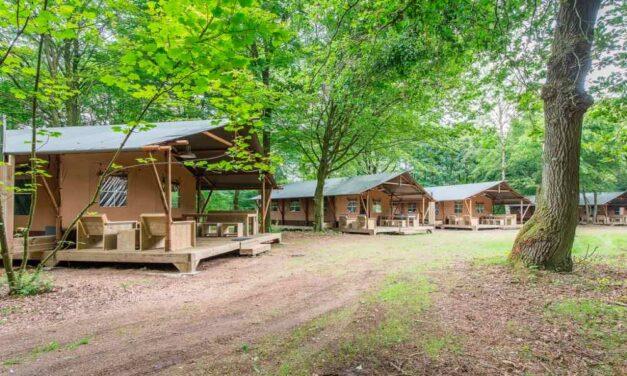 Toffe safaritent in Gelderland | 4-daagse zomerdeal voor maar €259,-