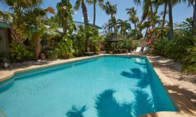 WOW! 4**** verblijf (9,1/10) op Aruba | 9 dagen slechts €649,- p.p.