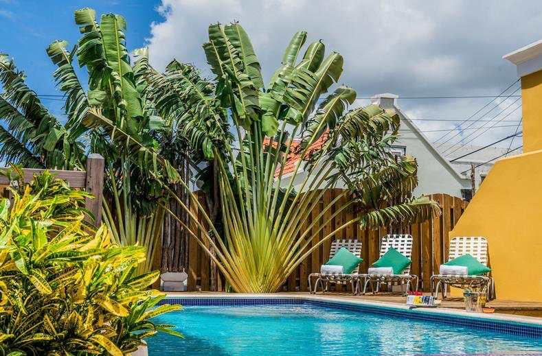 Droomvakantie op Curacao   9 dagen incl. vluchten & verblijf €605,- p.p.