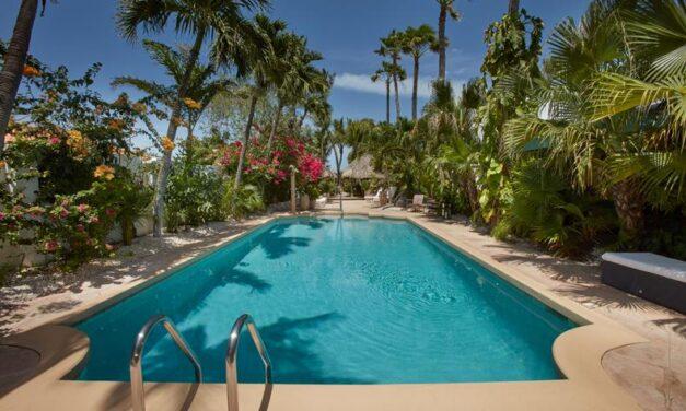 Super last minute! Luxe 4* verblijf op Aruba | 9 dagen incl. vluchten €749,-